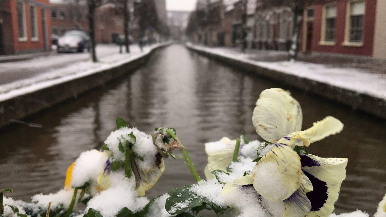 In beeld: De eerste sneeuw van 2021
