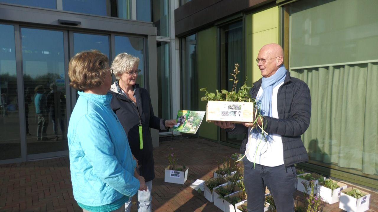 Midden-Delflanders maken gemeente groener met plantjes rond bomen