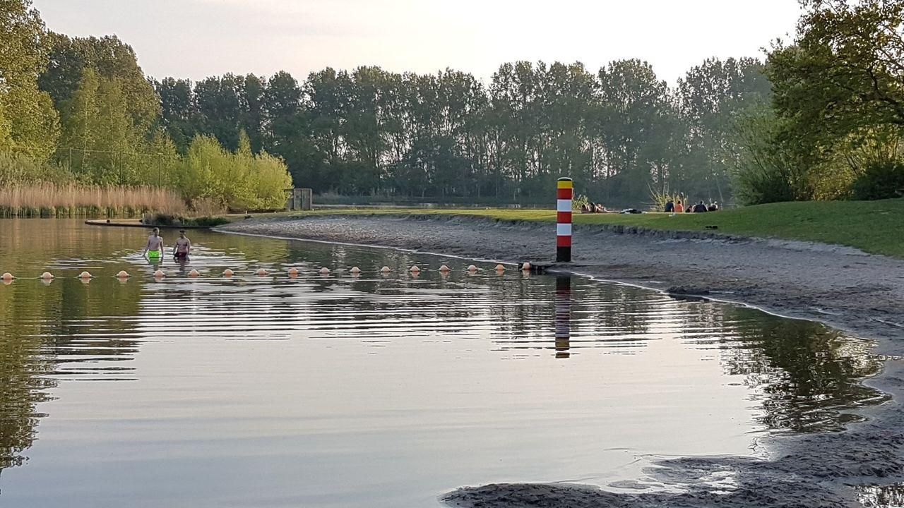 Blauwalgen in Prinsenbos: 'geen methode om à la minute te bestrijden'