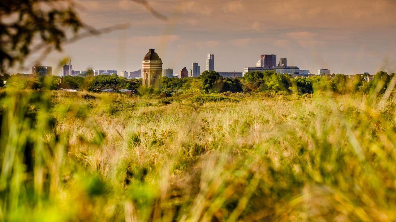 Officiële status Nationaal Park aangevraagd voor Hollandse Duinen