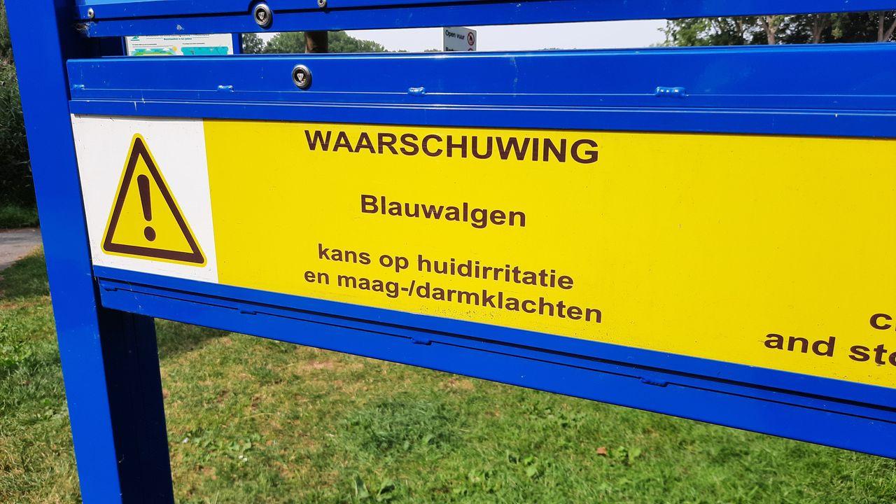 AWP: zet mobiele pompen in tegen blauwalgen Prinsenbos