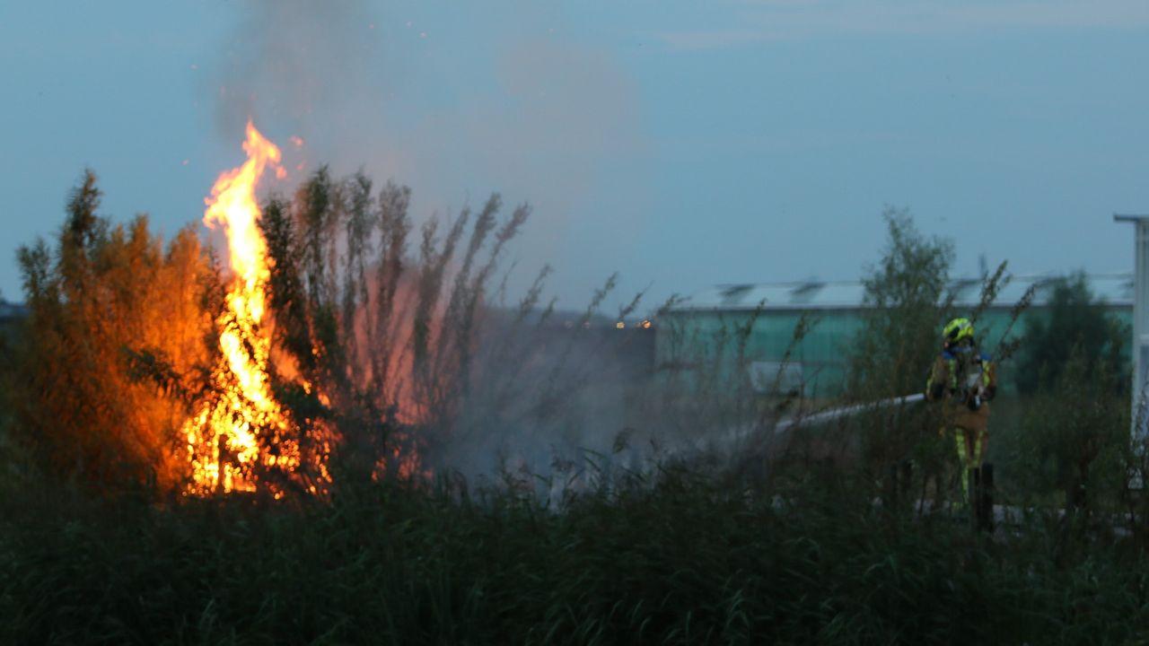 Bosjes in brand in Poelzone
