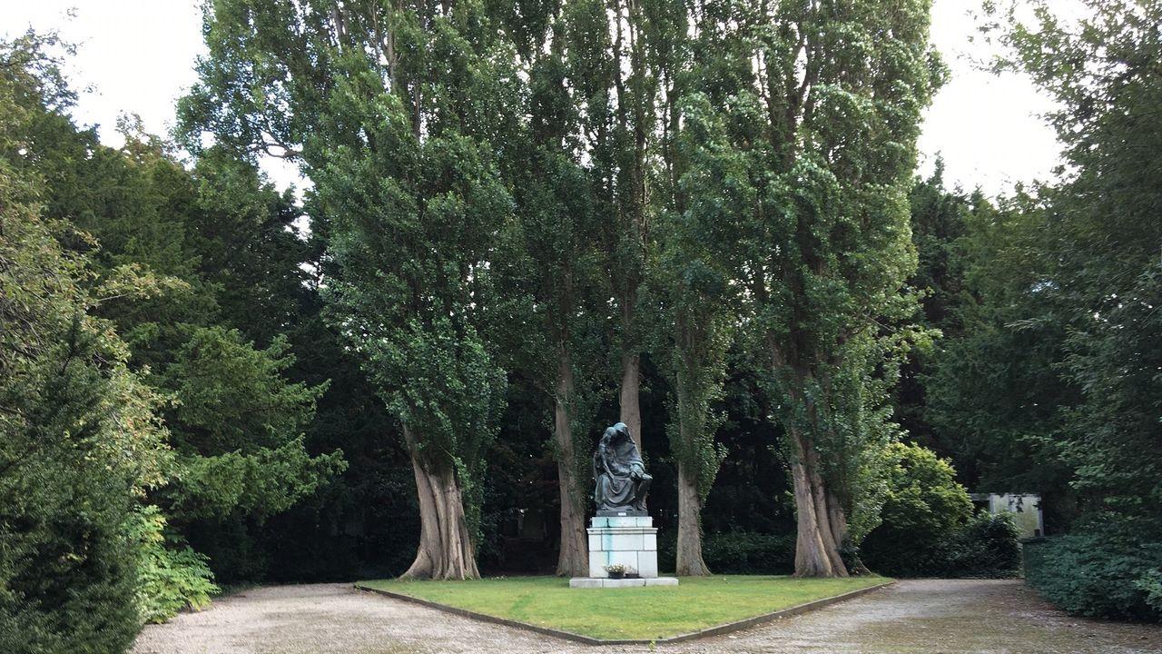 'Geen plannen voor herontwikkeling kerkhof aan Dijkweg'