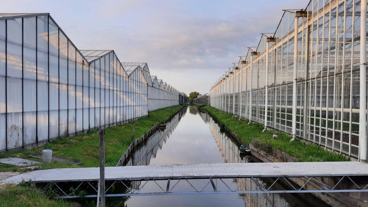 'Slechts handjevol tuinbouwbedrijven houdt zich niet aan zuiveringsplicht'