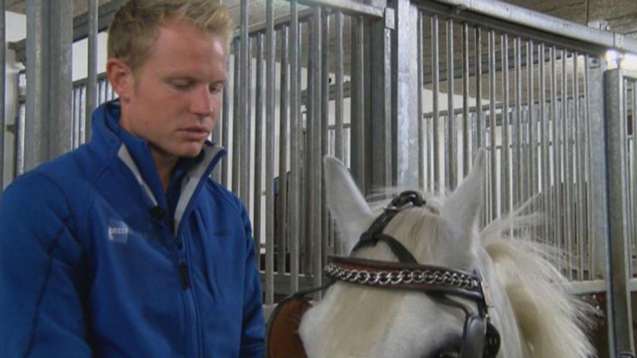 'Kan de paardensport eindelijk doorgaan onder coronaregels, krijgen we ons eigen virus'