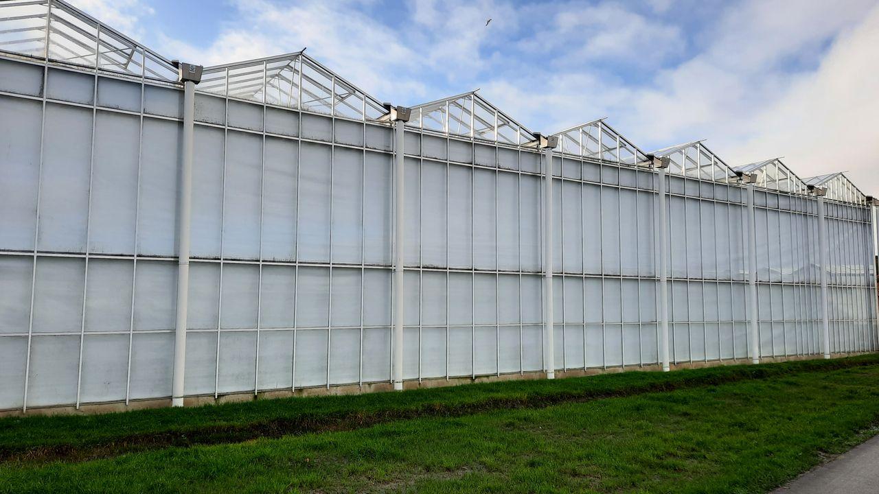 Inspectie SZW kondigt onderzoek in tuinbouw aan