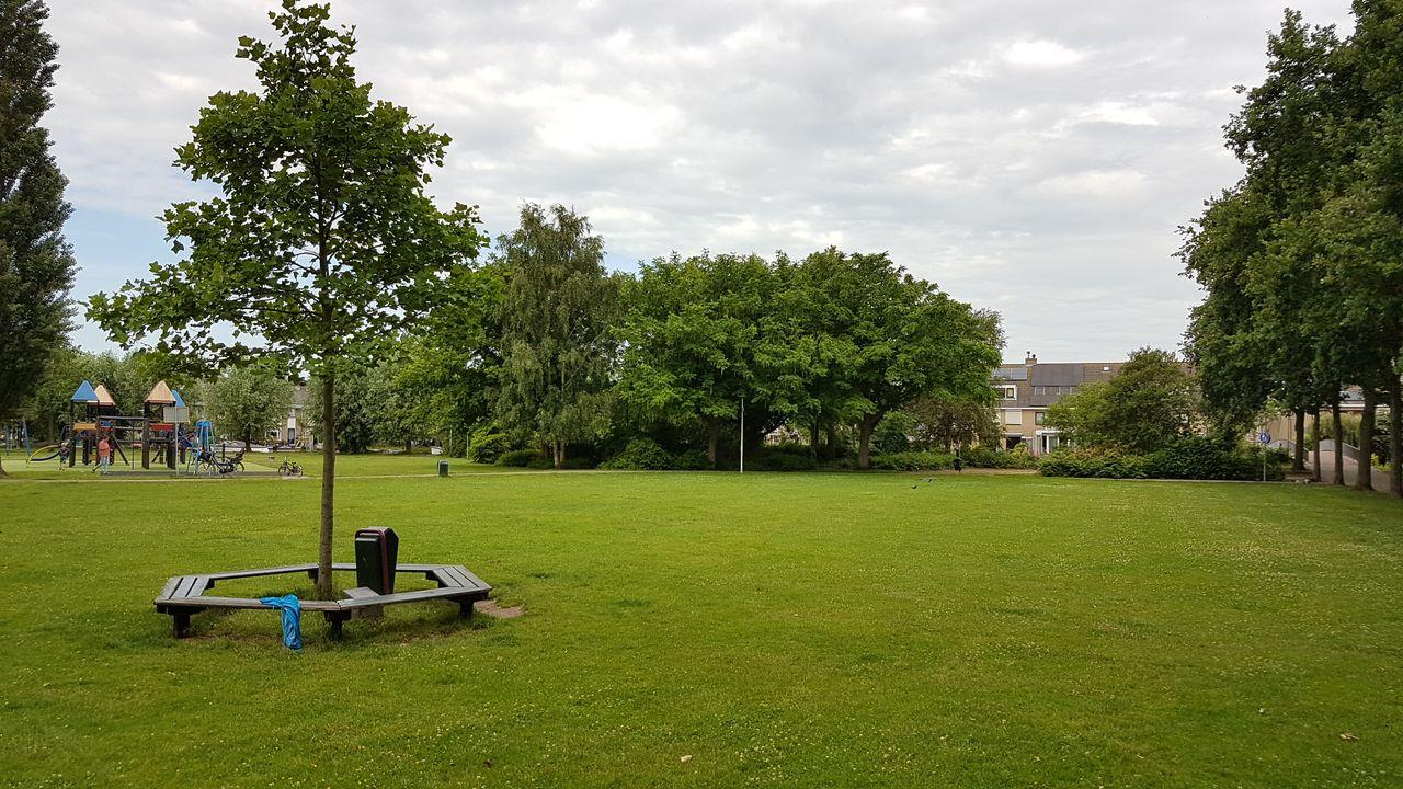 Ophef om calisthenics in Dreespark: 'laatste groen verdwijnt'