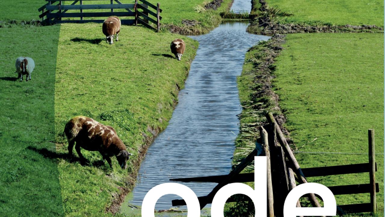 Streekhistorie: Ode aan het landschap van Maasland