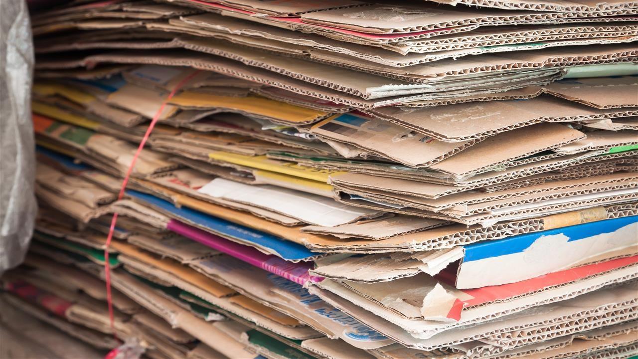 Inzameling oud papier start weer in Maassluis
