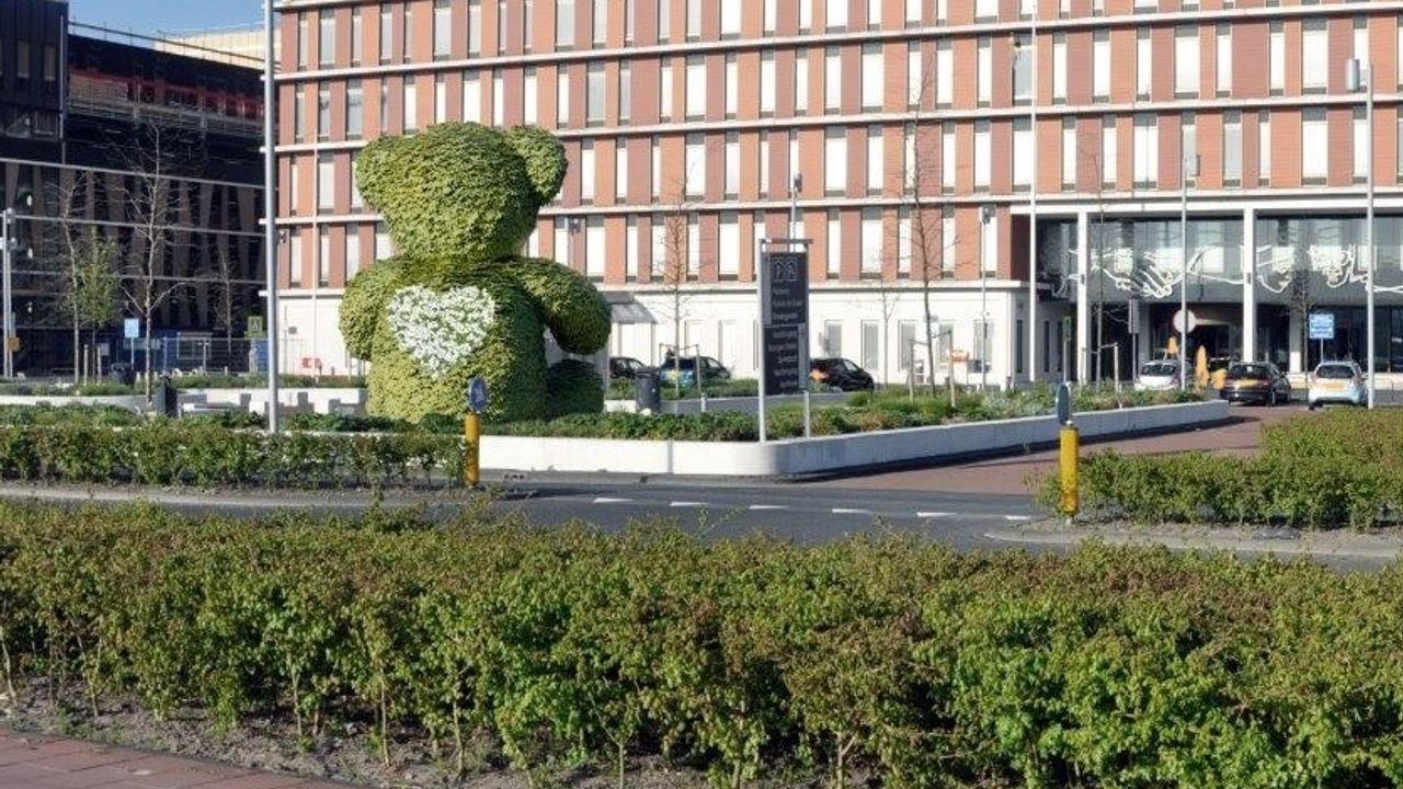 Plan: enorme bloemenbeer bij ziekenhuis Delft, en dat 5 jaar lang