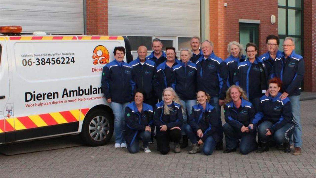 Nog geen nieuw onderkomen voor Dierennoodhulp West Nederland