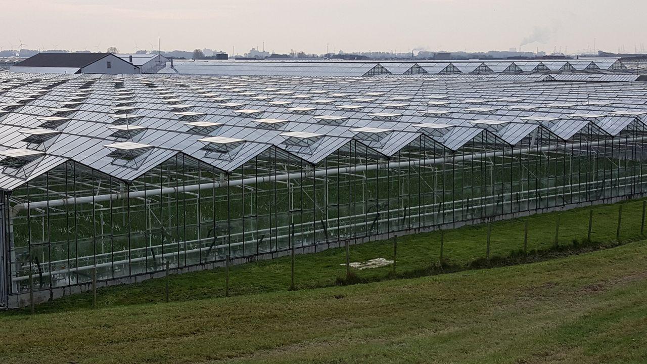 Leveringscontracten getekend voor aardwarmte in Maasdijk