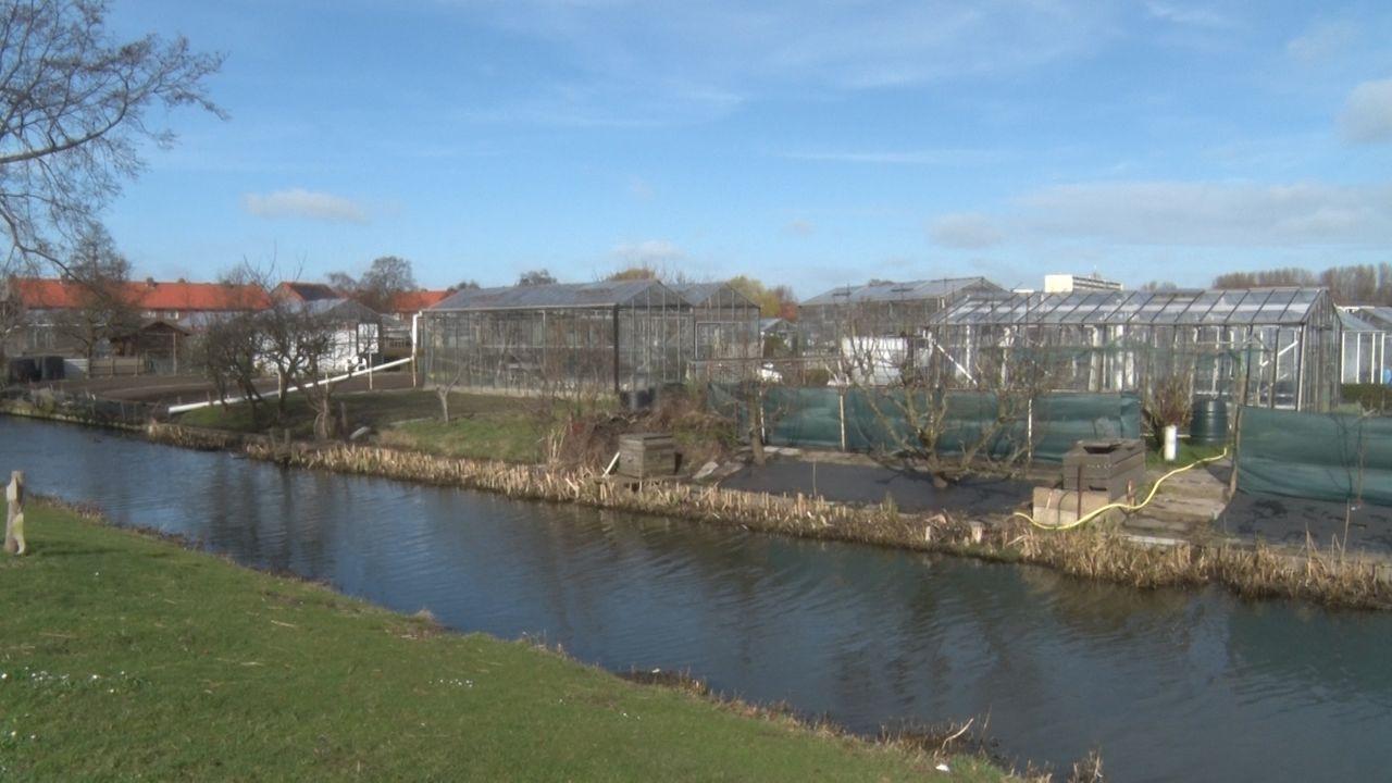 Proef om waterkwaliteit bij Noort Bonnen te verbeteren