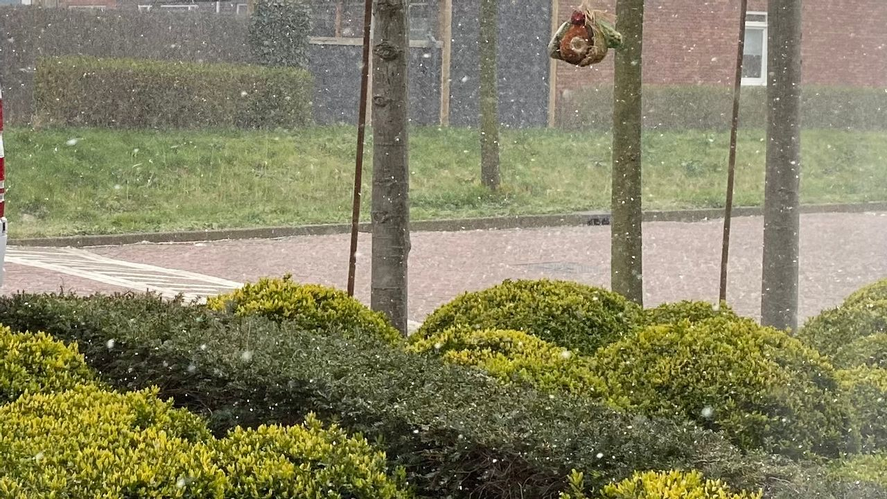 Aprilse grillen: sneeuw met Pasen