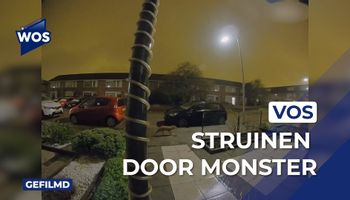 Vos struint door Monster