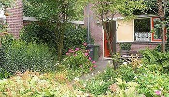 Digitale workshop Kennismaken met een levende tuin
