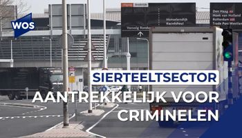 Bloemenveiling kwetsbaar voor criminaliteit
